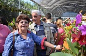orquidea-sumare